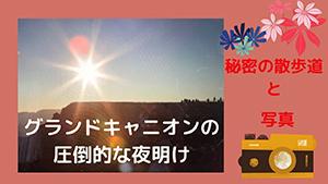 夏野苺channel